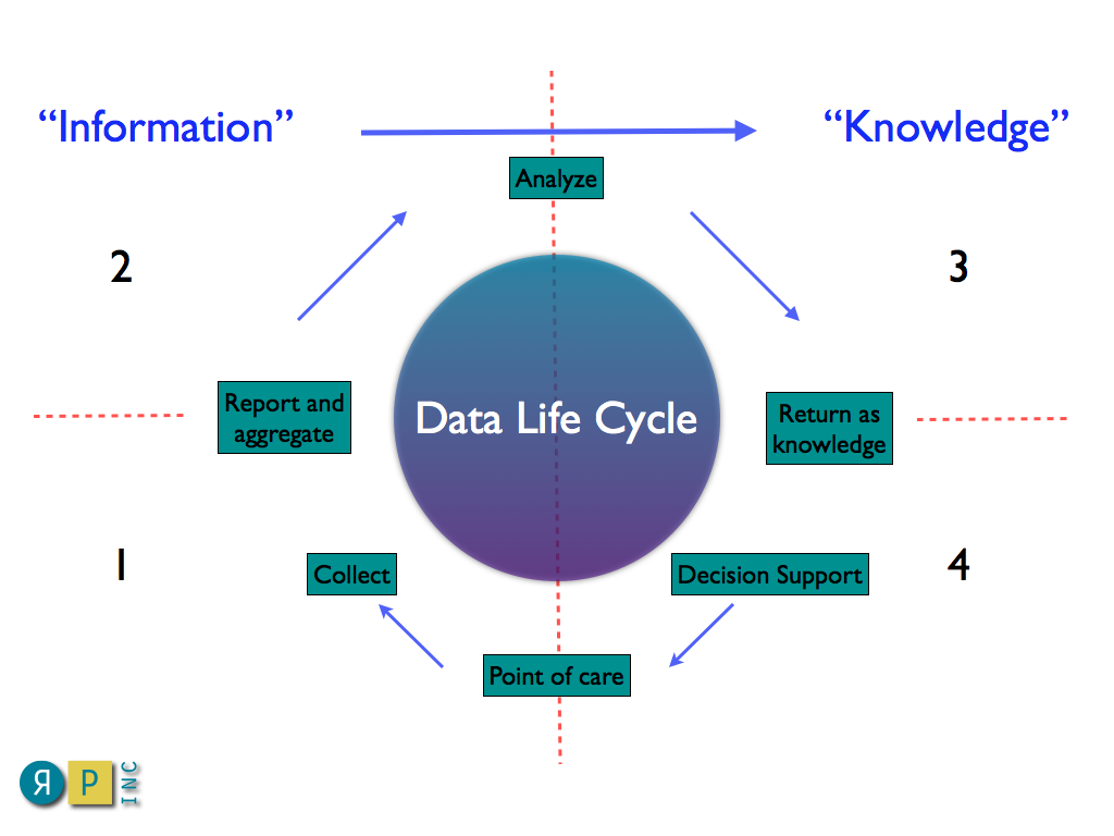 The data life cycle pooptronica Choice Image